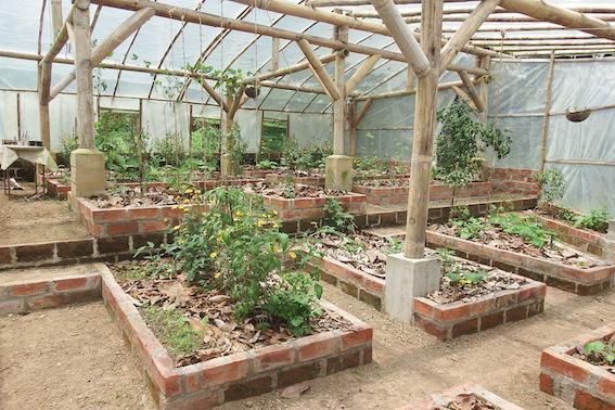 Greenhouse renovation – Jardin de los Sueños